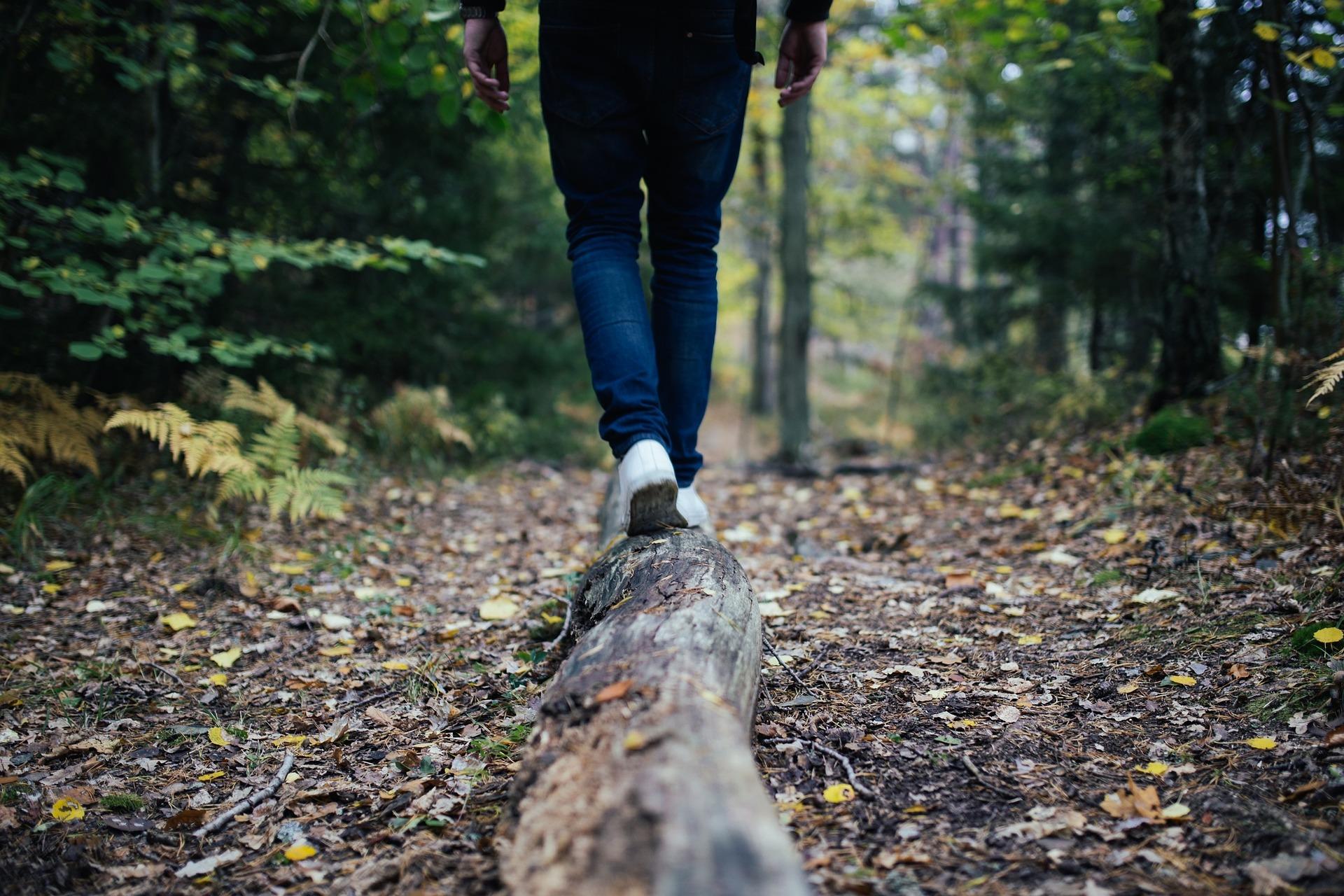 Trekking and Outdoor